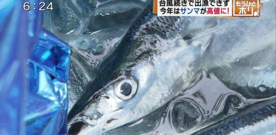 9月13日_今日ドキッ!18時台_台風続きで出漁できず 今年はサンマが高値に