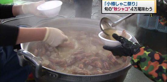 11月12日(土)小樽シャコ祭り
